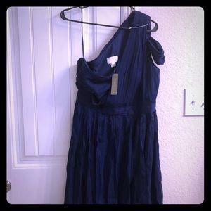 """Size 14 J. Crew dress """"Cara"""". Never worn."""